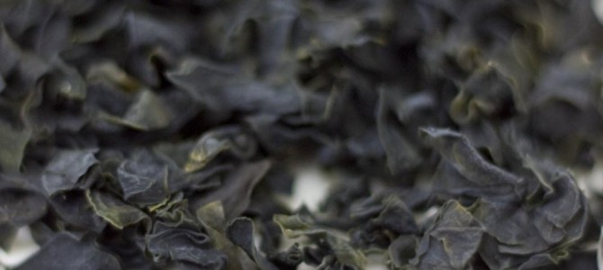 The Nutritional Bounty Of Seaweed