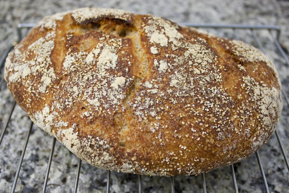 "Sourdough bread is considered a fermented food because of its traditionally long rise time and use of ""wild"" bacteria and yeasts"