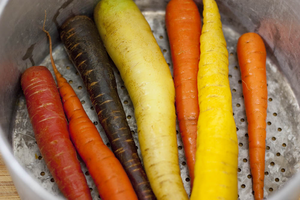 colored carrots, root vegetables