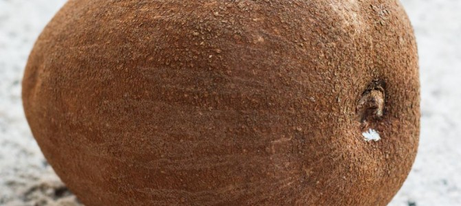 Mamey Sapote For A Nutritious, Delicious Dessert